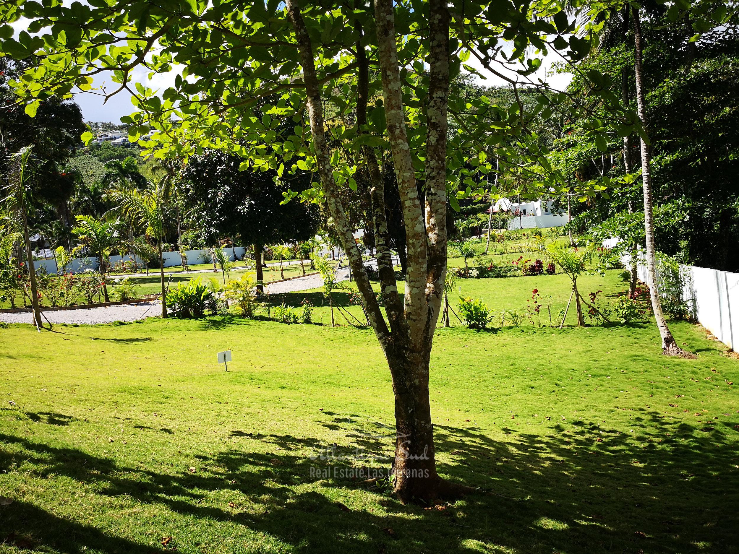 Ready to build lands for sale in Las Terrenas Real Estate Dominican Republic11.jpg