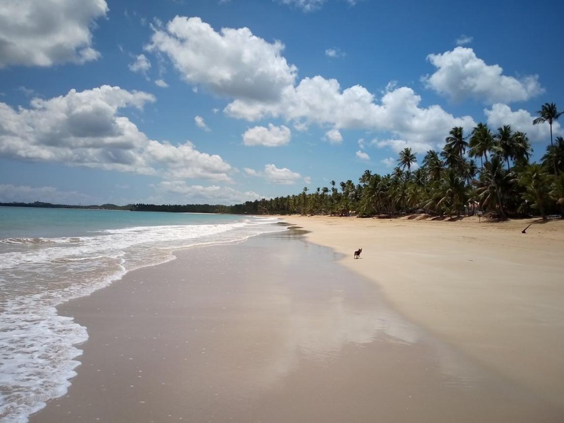 Coson beach Las Terrenas.png