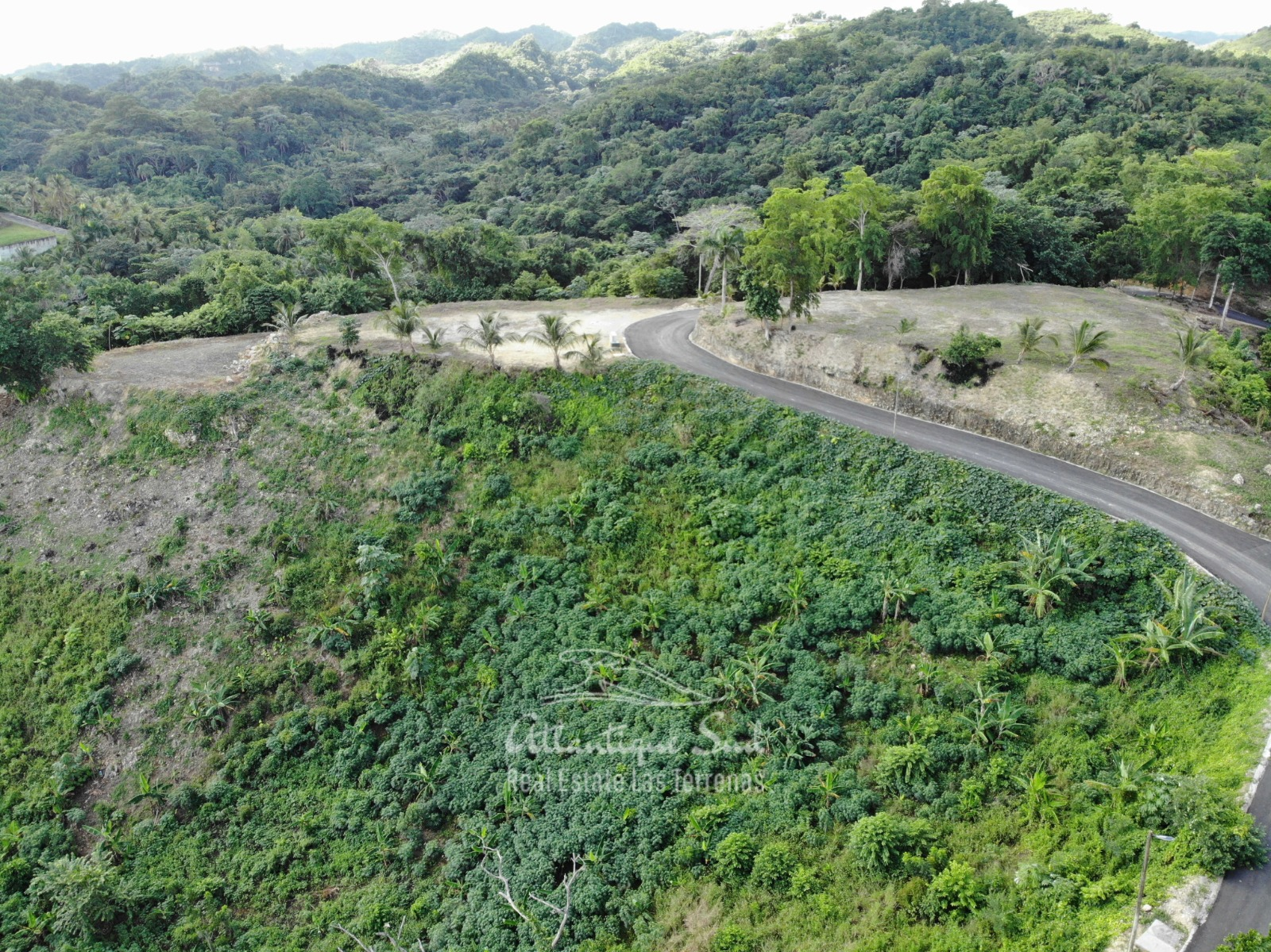 Land Lots for sale las terrenas samana6.jpeg