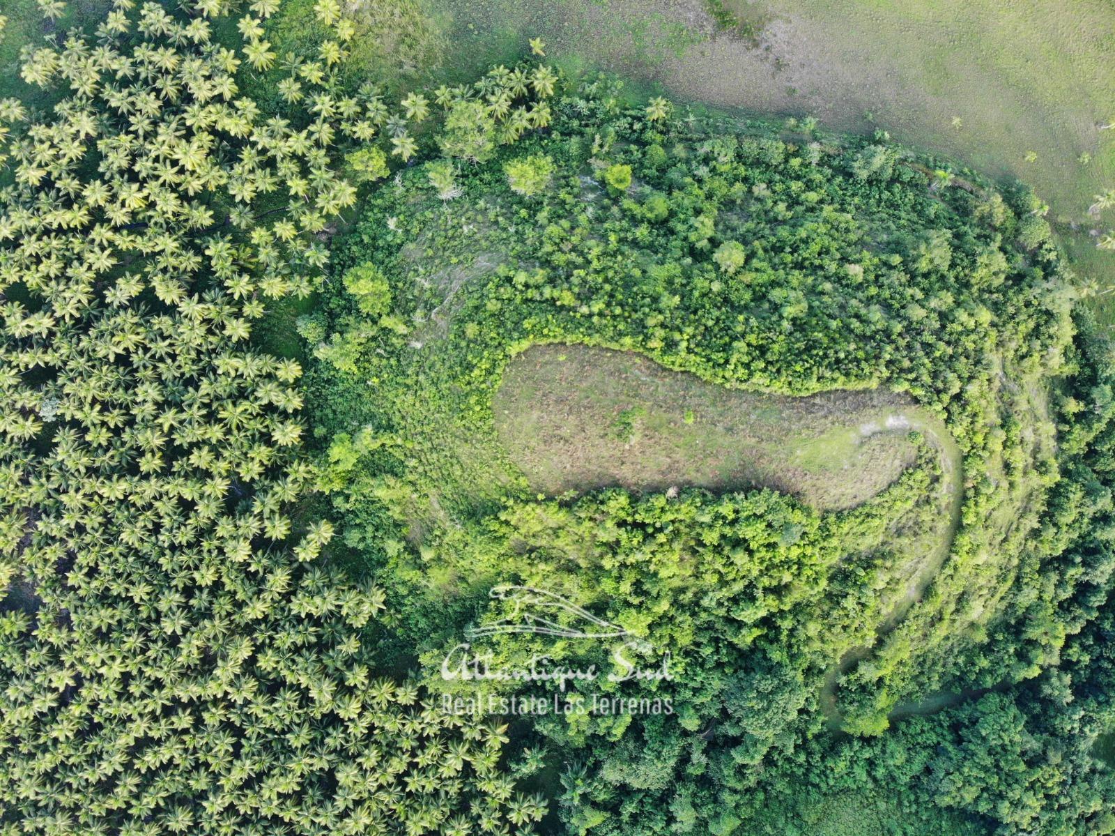 Barbacoa Land for Sale Samana 2.jpeg