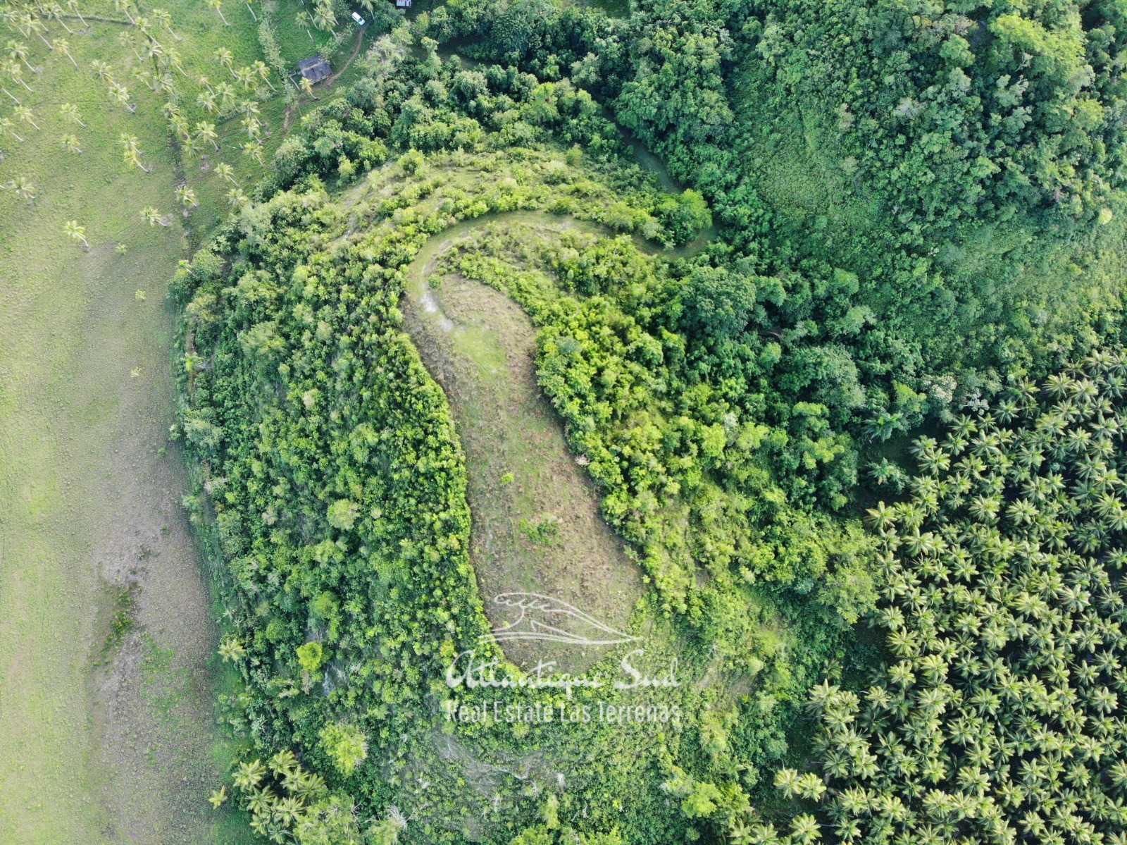 Barbacoa Land for Sale Samana 3.jpeg