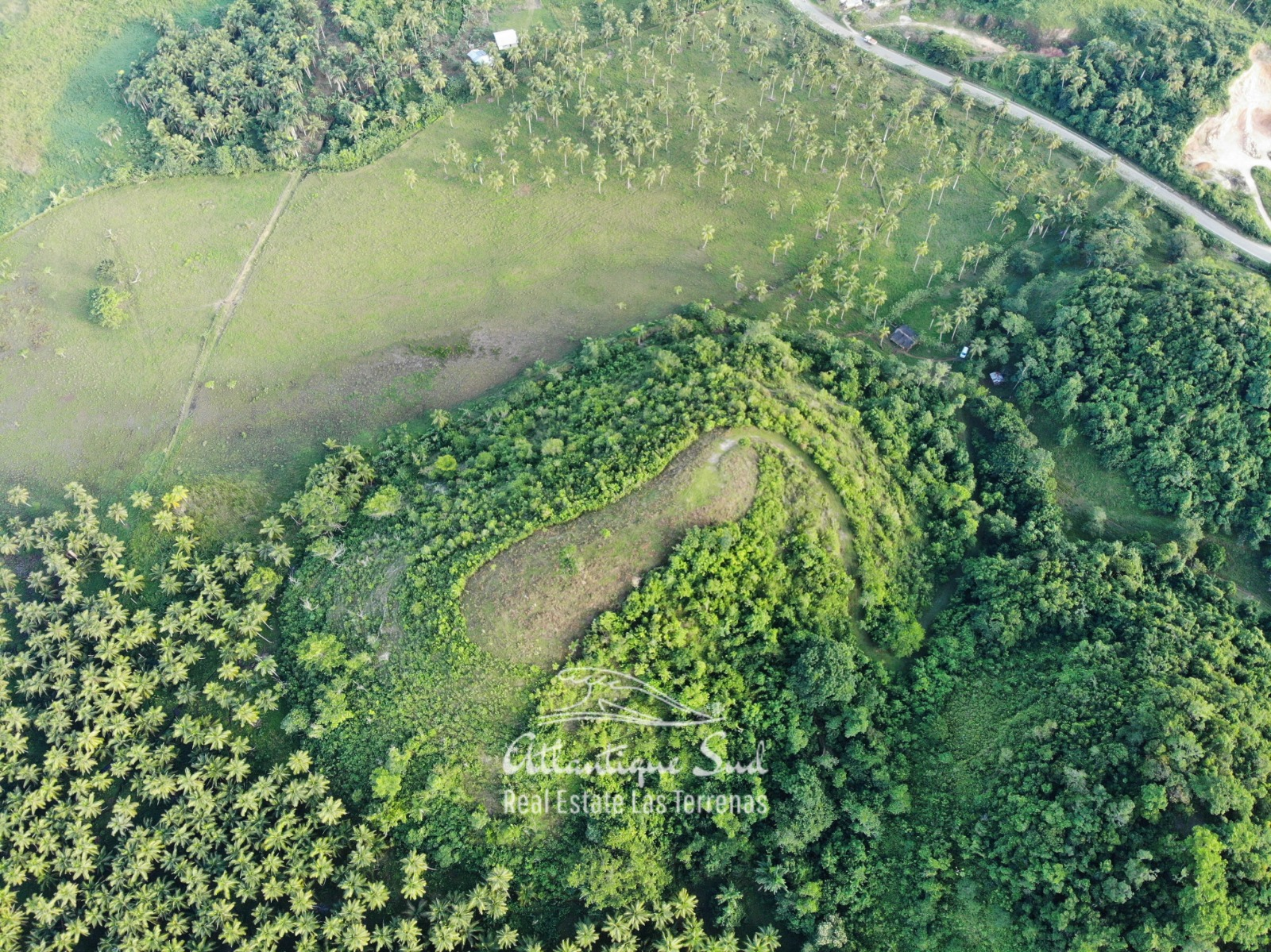 Barbacoa Land for Sale Samana 4.jpeg