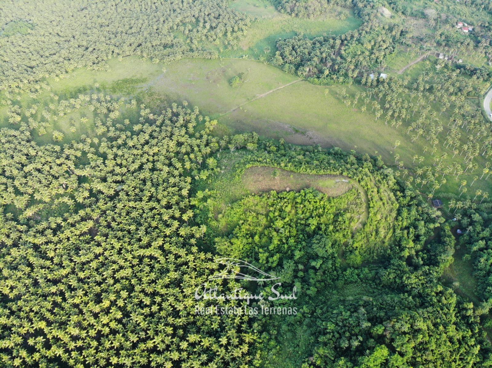 Barbacoa Land for Sale Samana 6.jpeg