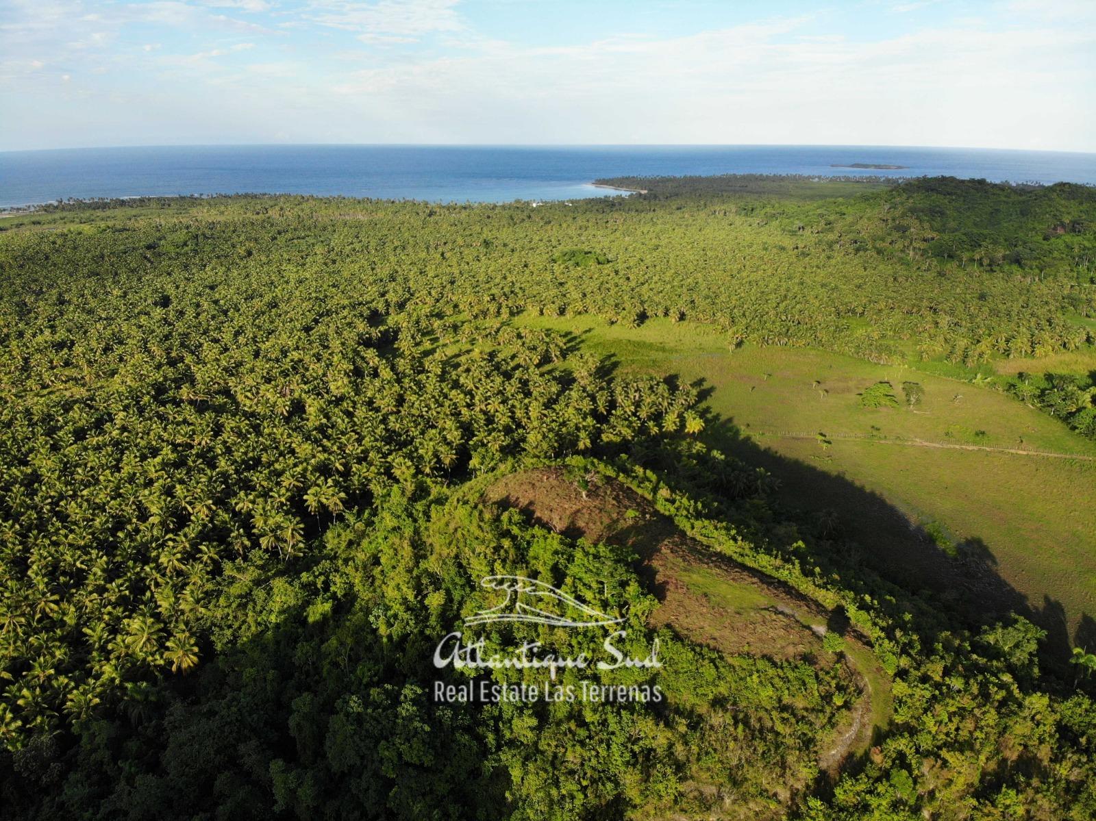 Barbacoa Land for Sale Samana 9.jpeg
