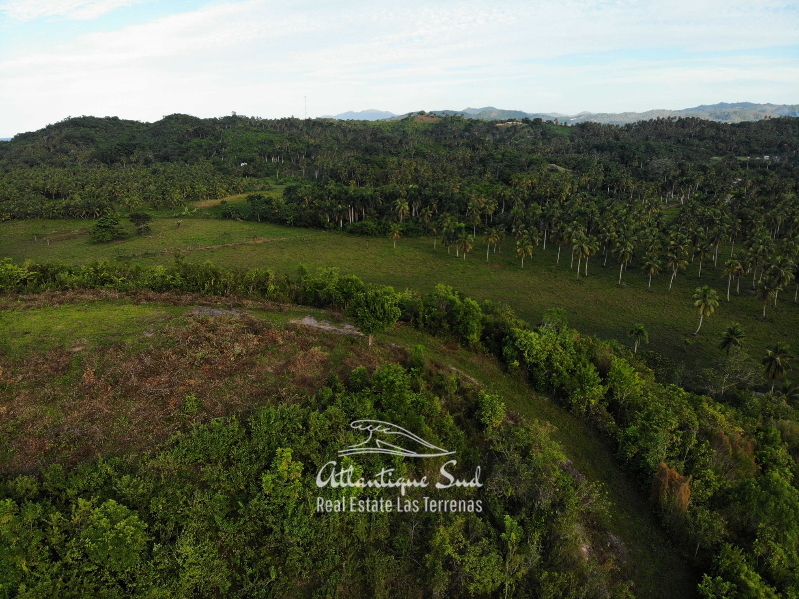 Barbacoa Land for Sale Samana 11.jpeg