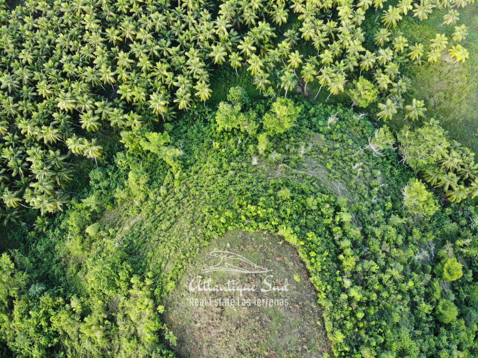 Barbacoa Land for Sale Samana 12.jpeg