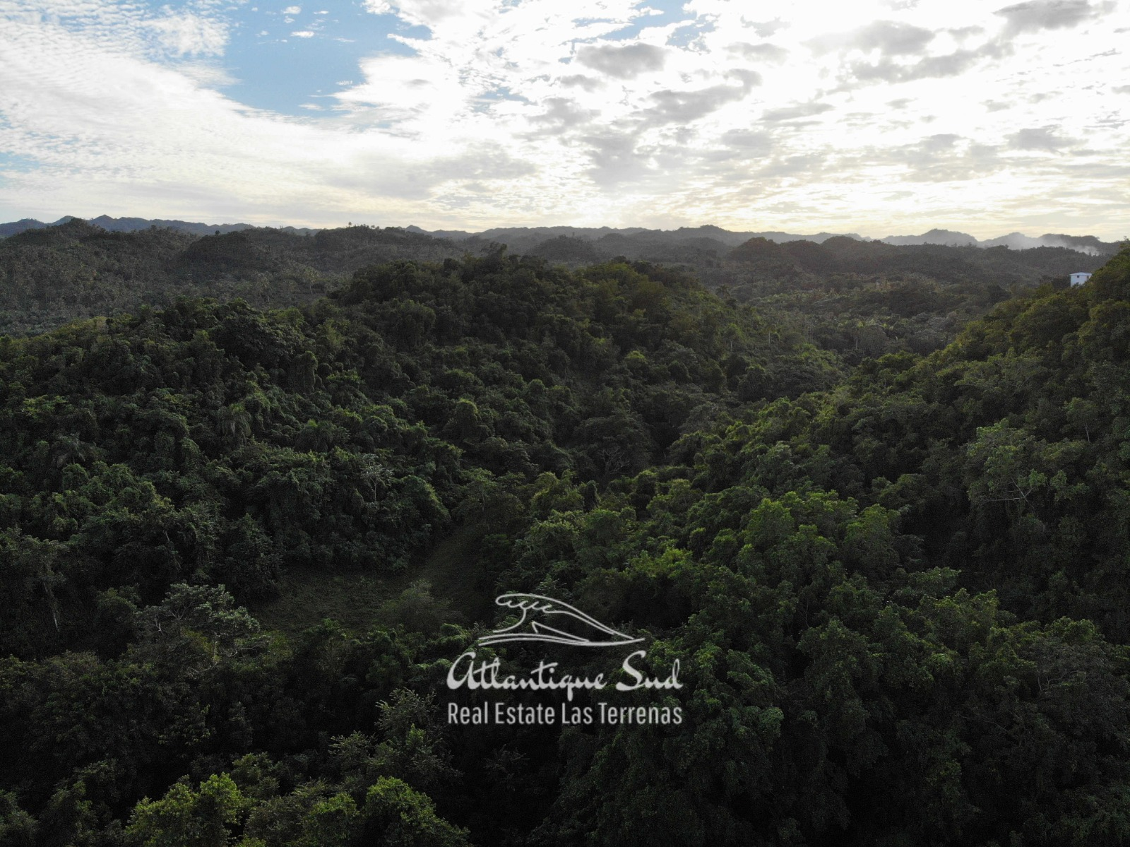Barbacoa Land for Sale Samana 13.jpeg
