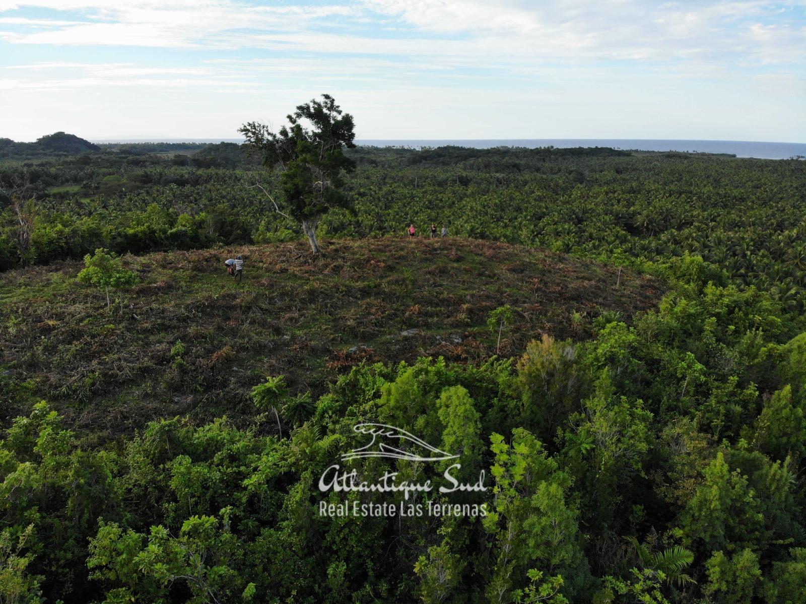 Barbacoa Land for Sale Samana 15.jpeg