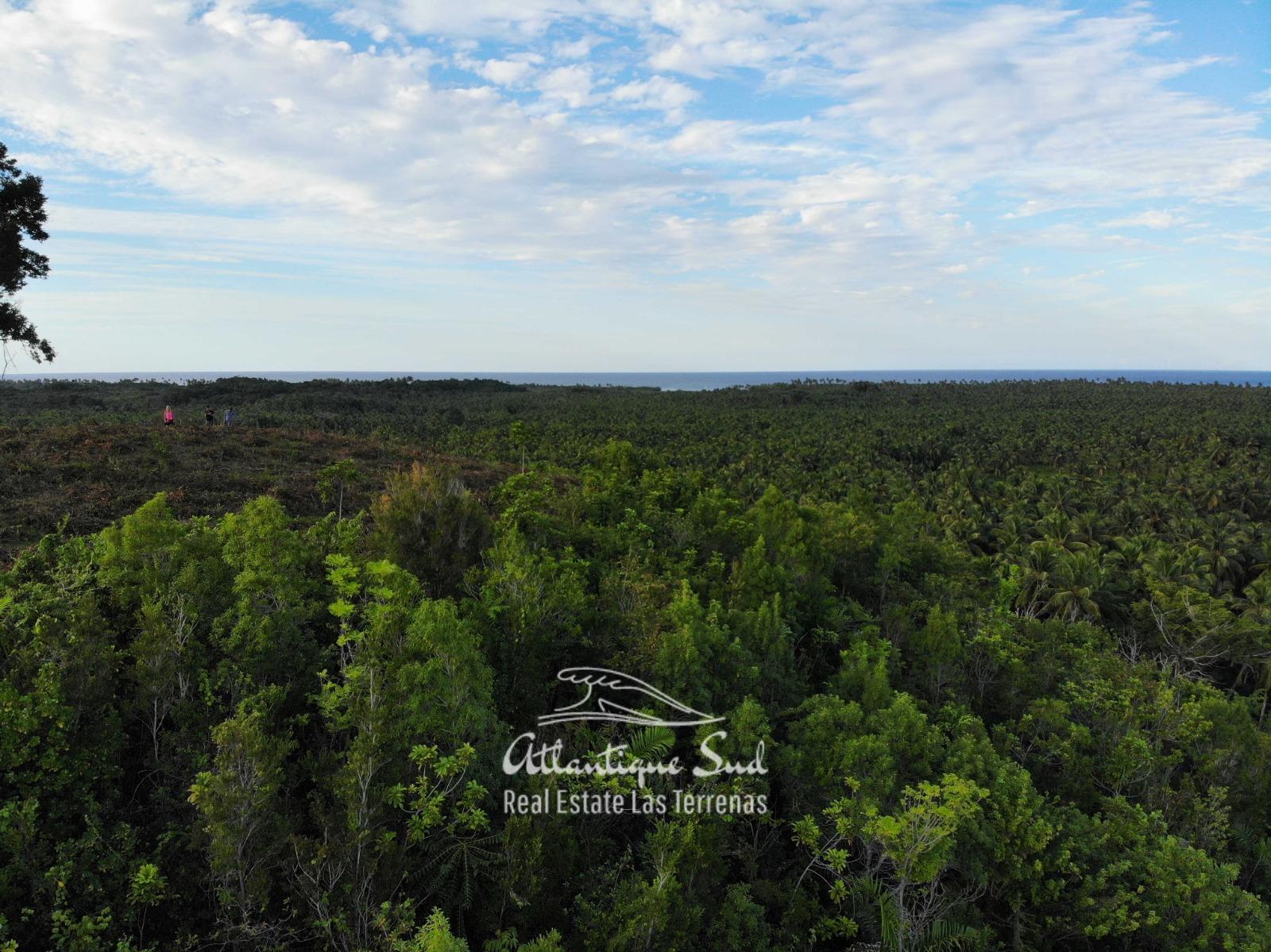 Barbacoa Land for Sale Samana 16.jpeg