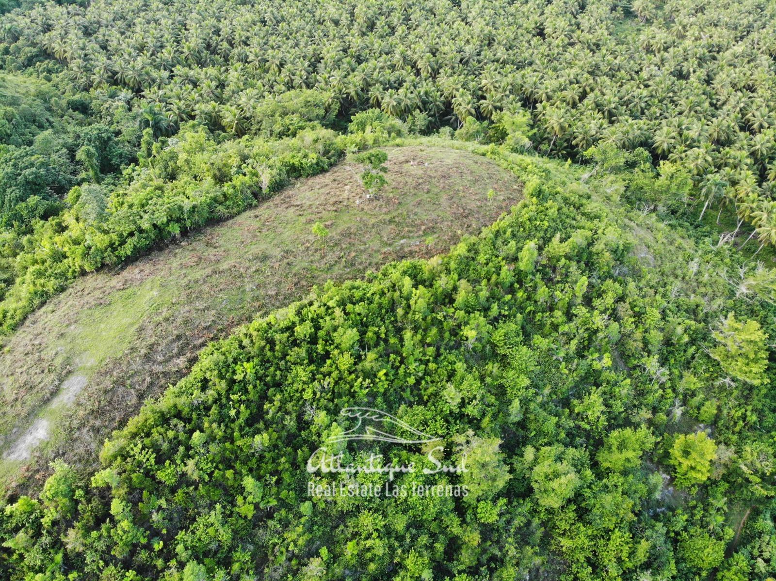 Barbacoa Land for Sale Samana 17.jpeg