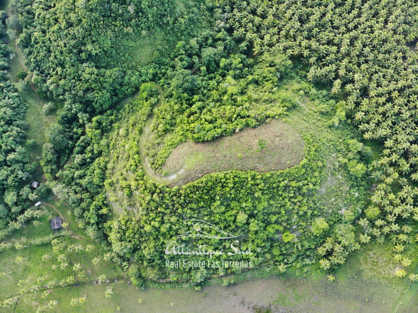 Barbacoa Land for Sale Samana 18.jpeg