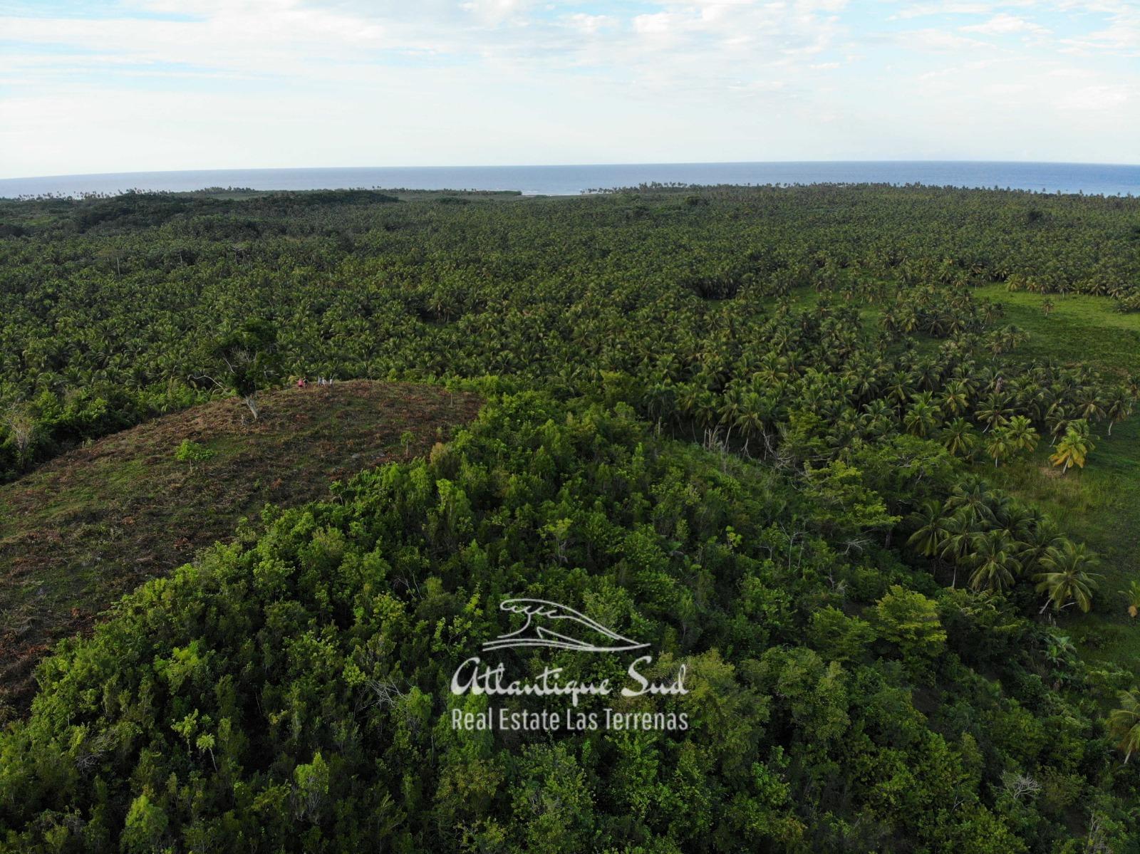 Barbacoa Land for Sale Samana 21.jpeg