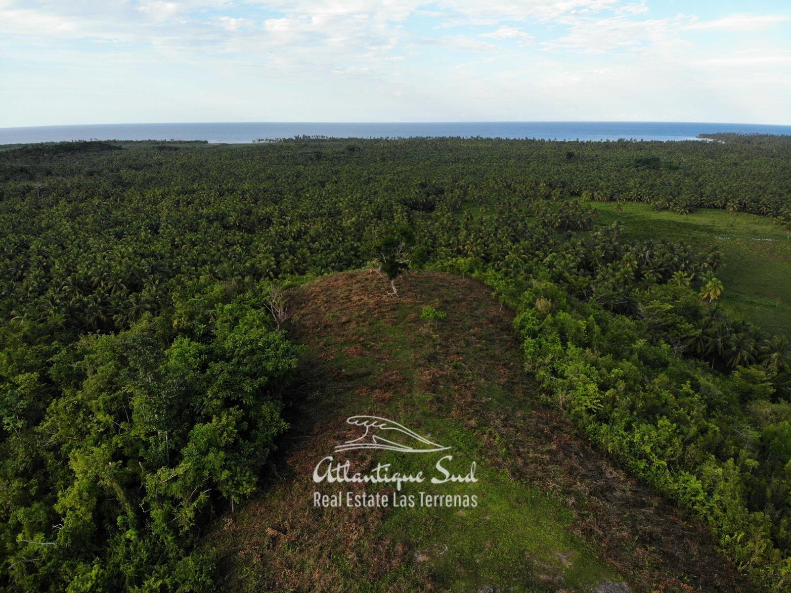 Barbacoa Land for Sale Samana 22.jpeg
