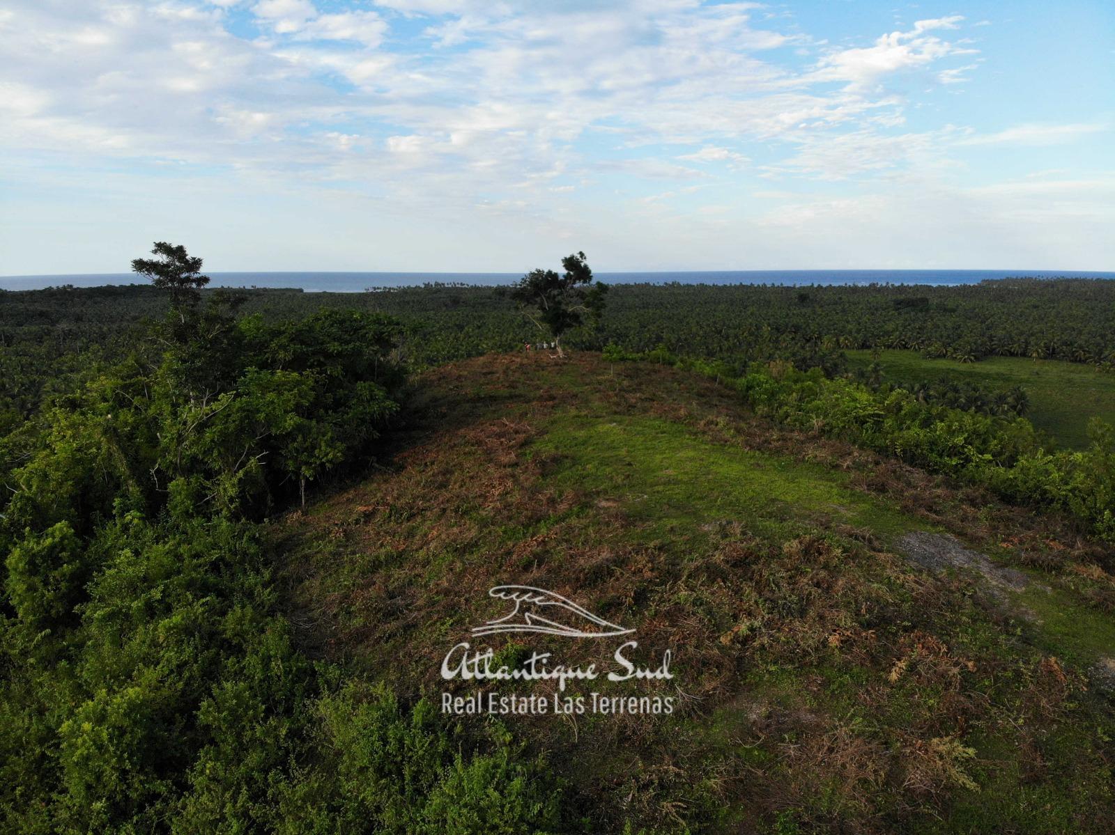 Barbacoa Land for Sale Samana 23.jpeg