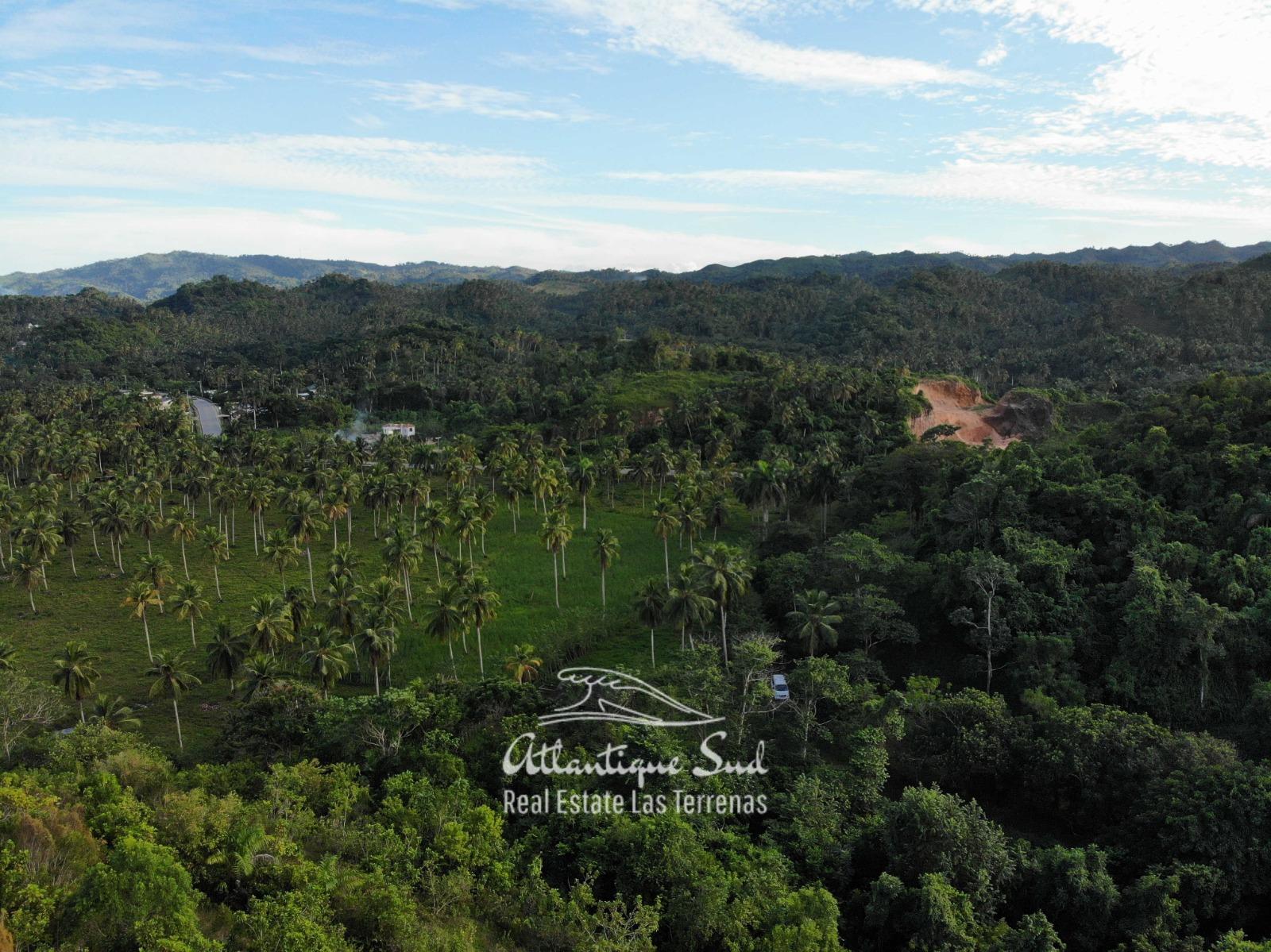 Barbacoa Land for Sale Samana 24.jpeg