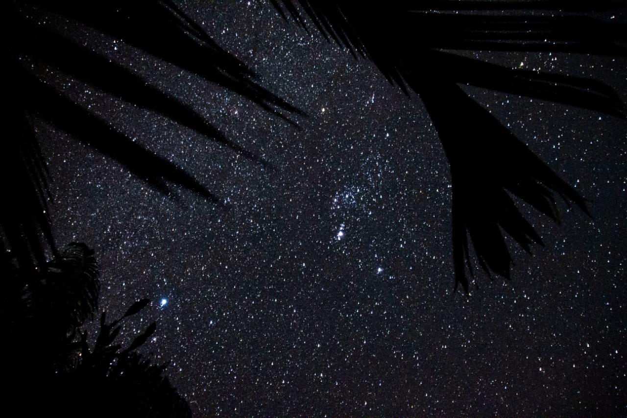 Sky with stars in Las Terrenas.jpeg