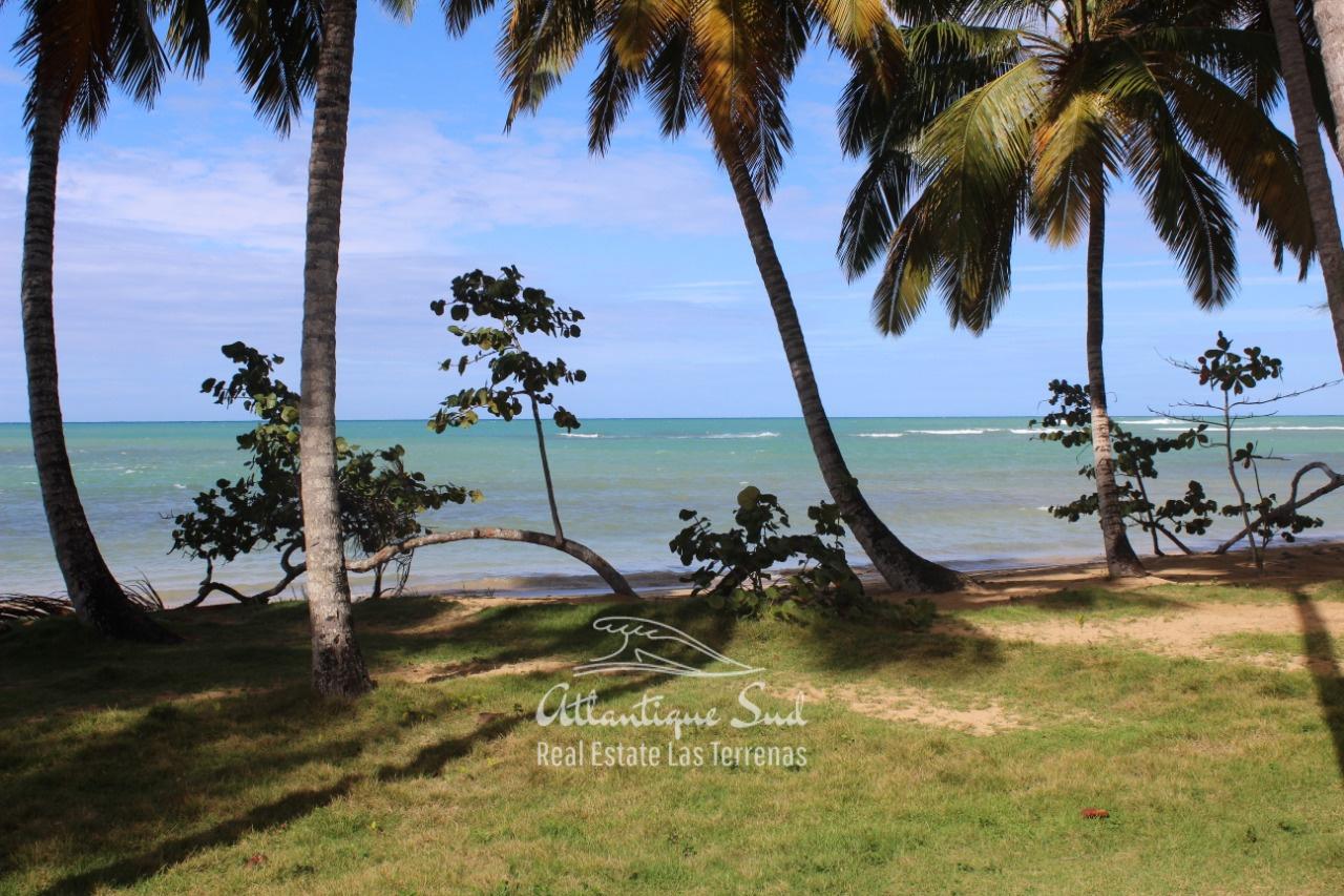 Comfortable apartment beachfront in tropical garden Real Estate Las Terrenas Dominican Republic1.jpeg