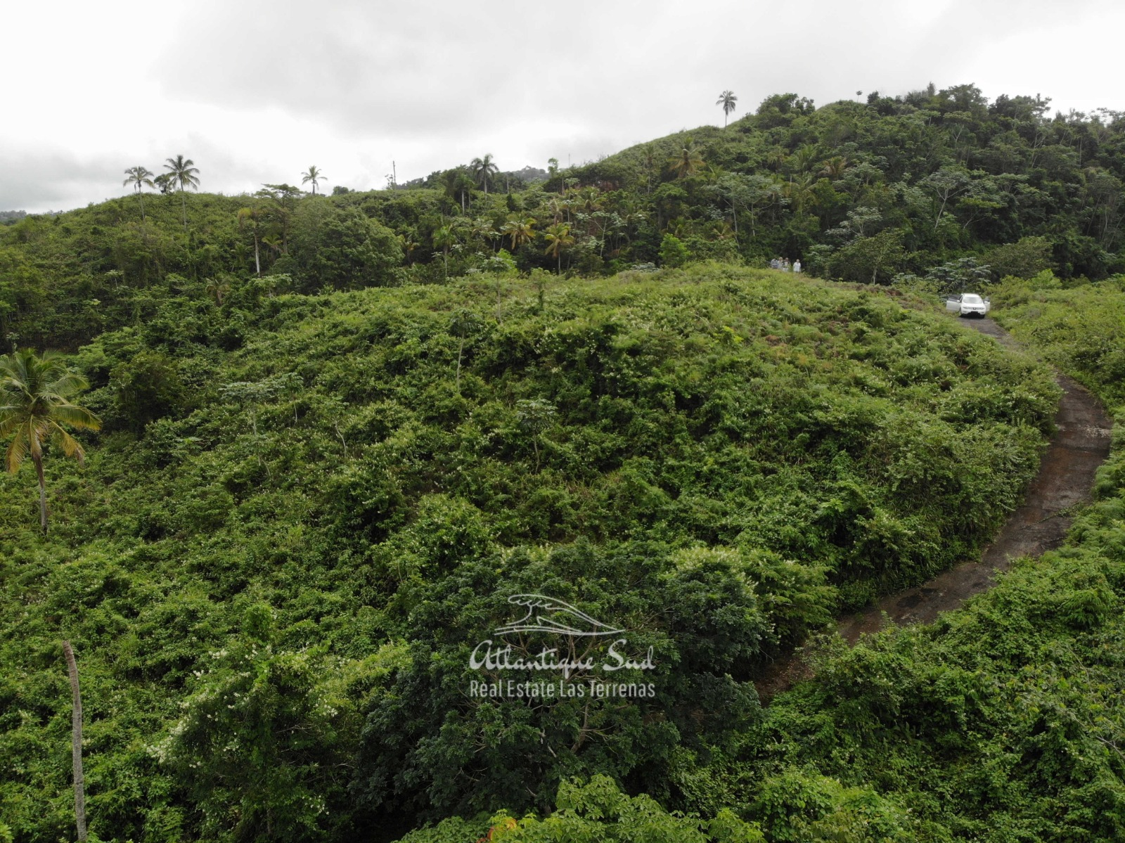 Hills for sale in Las Terrenas Dominican Republic 8.jpeg