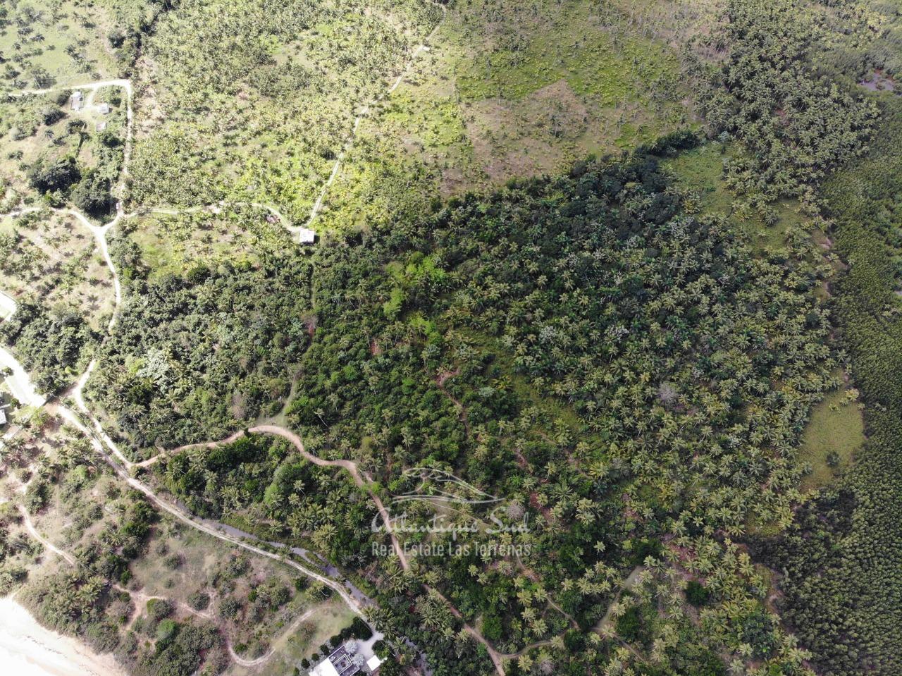 Land for sale El Limon Las Terrenas DR 12.jpeg