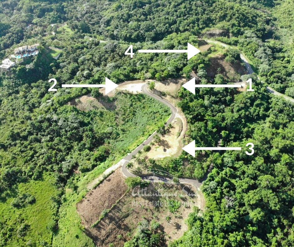 Loma eva lots to build for sale las terrenas airview.jpeg
