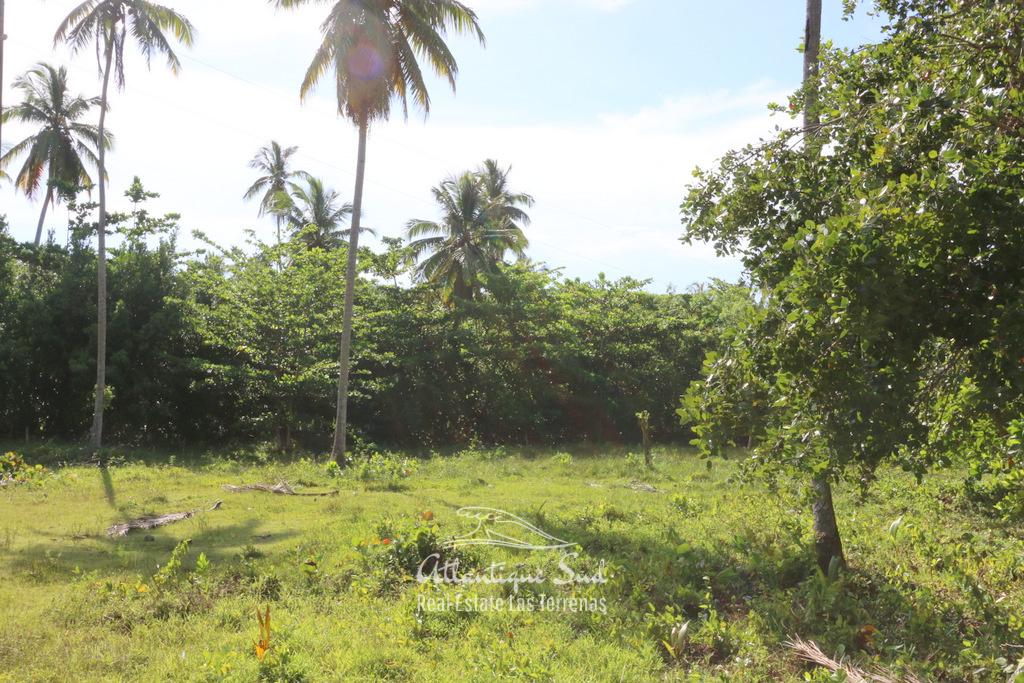 Portillo development land 1.jpg