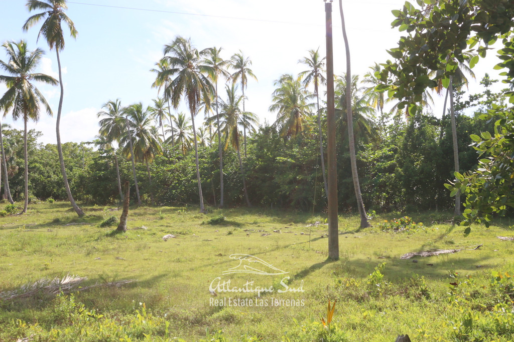 Portillo development land.jpg