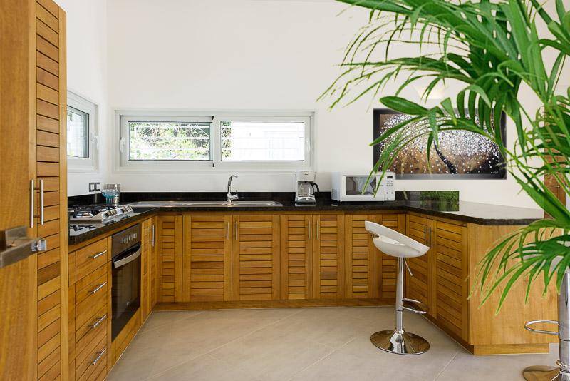 Modern villa LT1.jpg