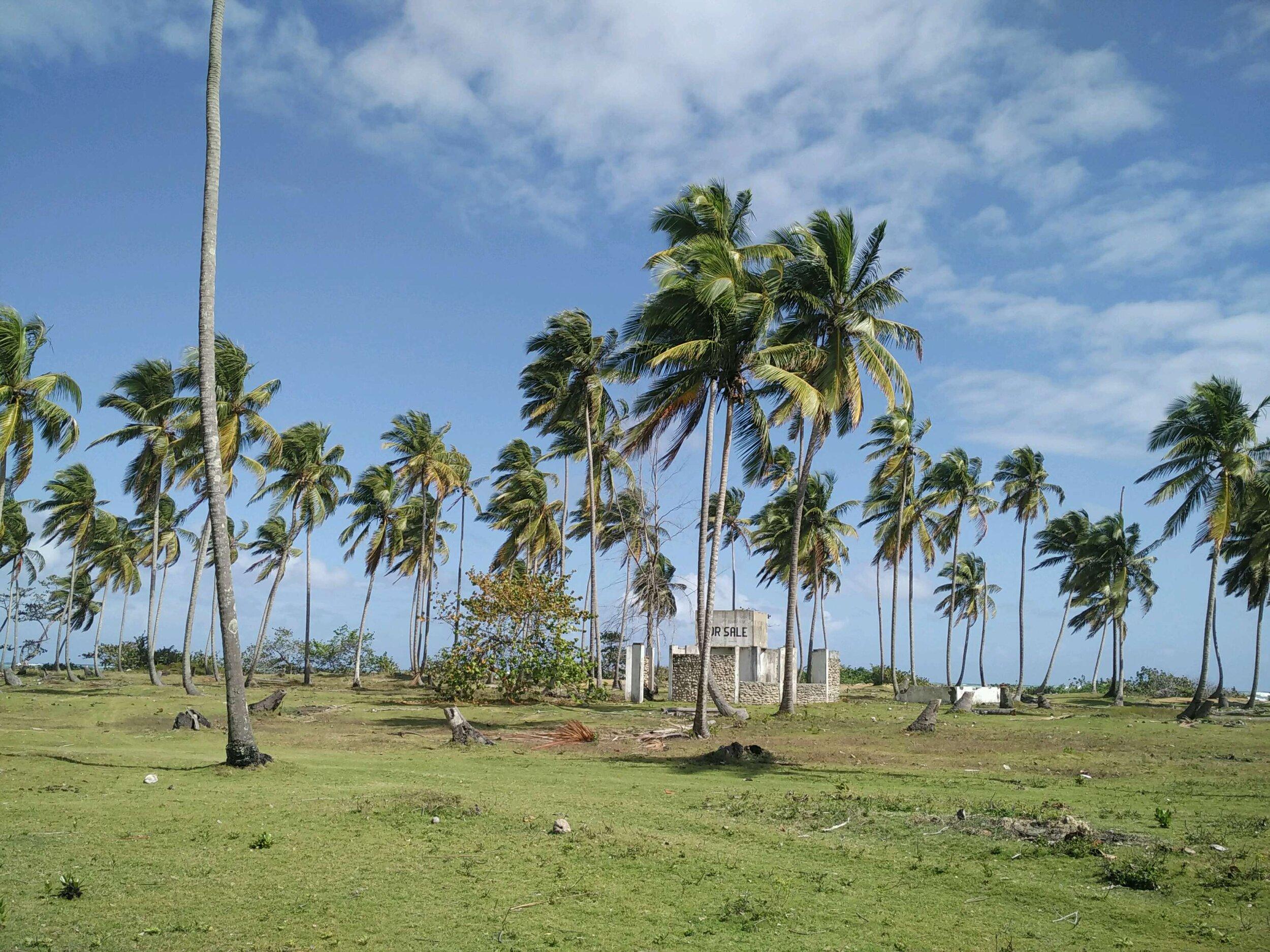 beachfront land el limon for sale.jpg