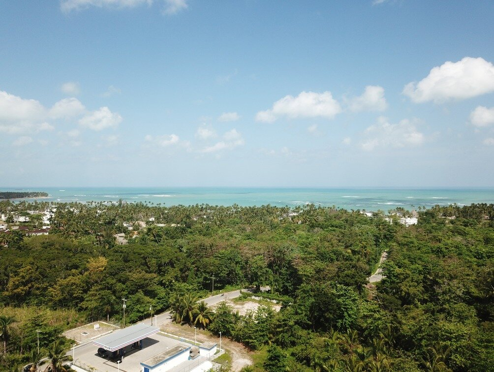 first line hill for sale las terrenas 1.jpeg
