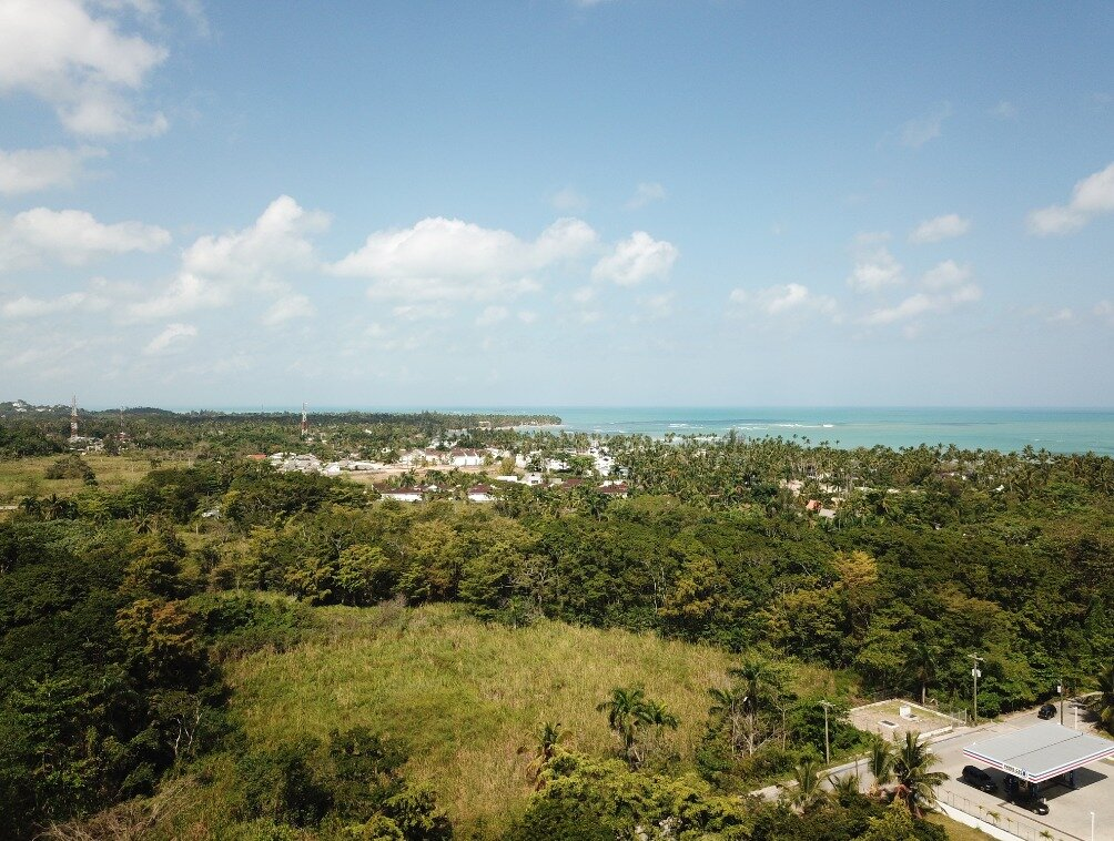 first line hill for sale las terrenas 2.jpeg