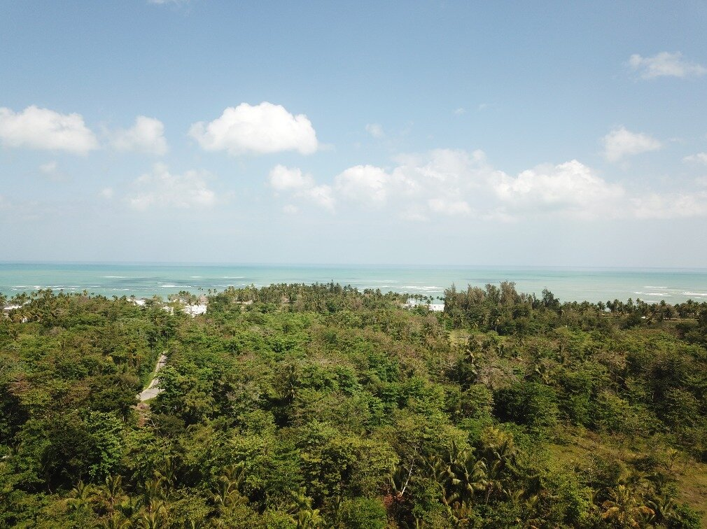 first line hill for sale las terrenas 3.jpeg