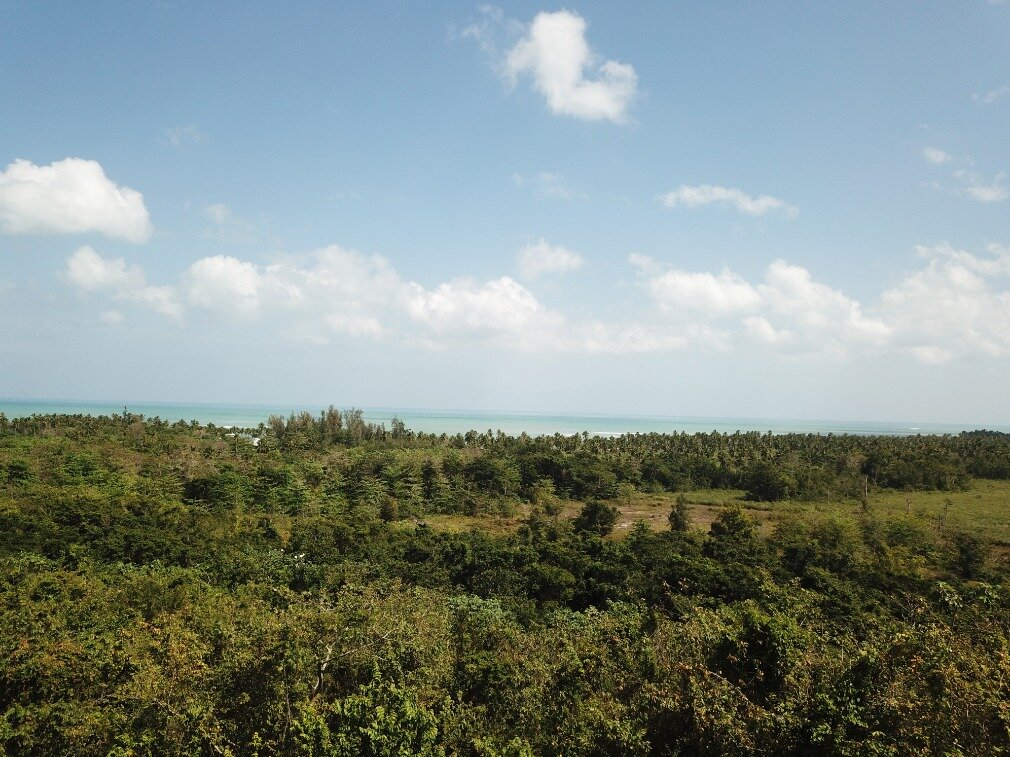 first line hill for sale las terrenas 5.jpeg