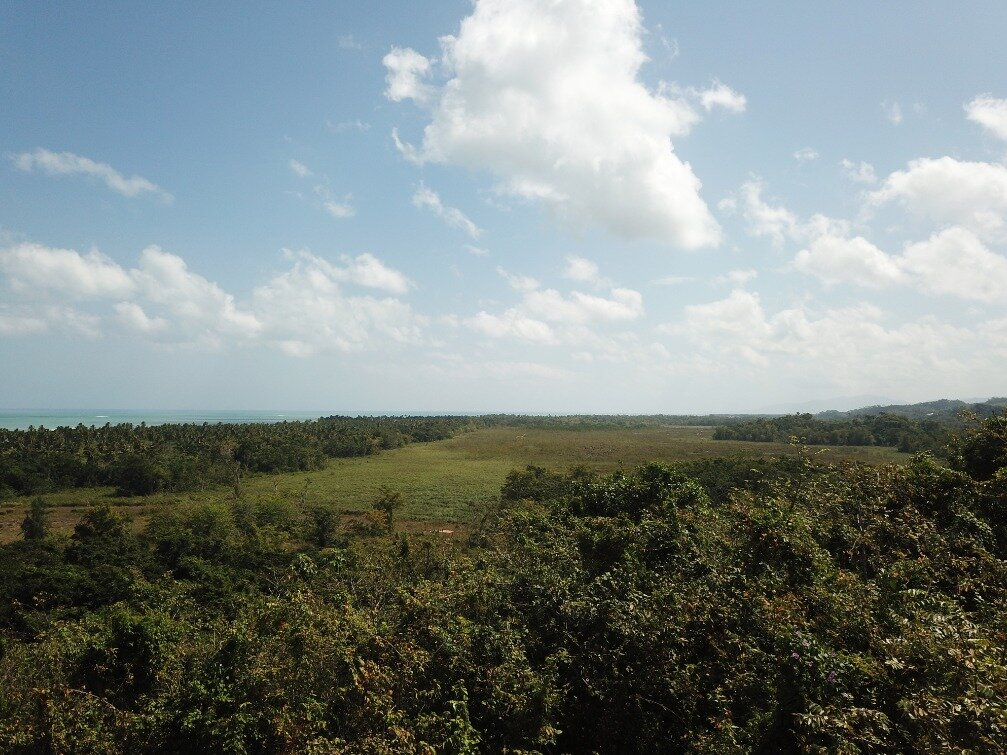 first line hill for sale las terrenas 6.jpeg