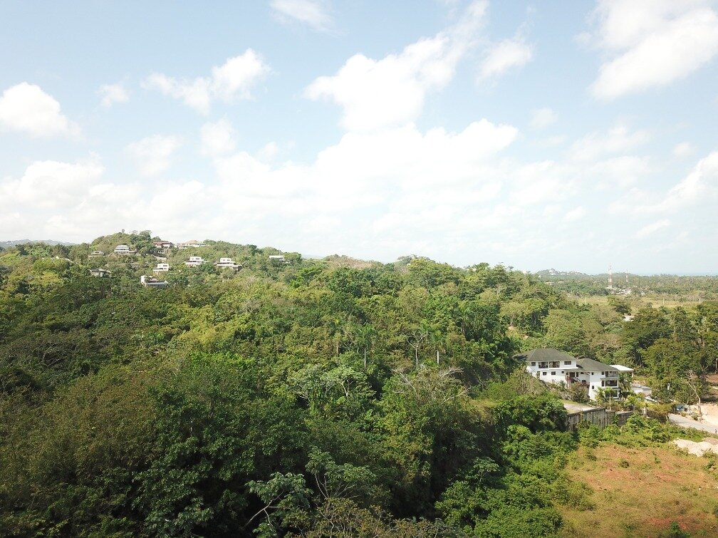 first line hill for sale las terrenas 8.jpeg