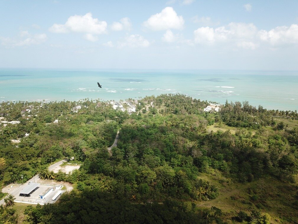 first line hill for sale las terrenas 9.jpeg