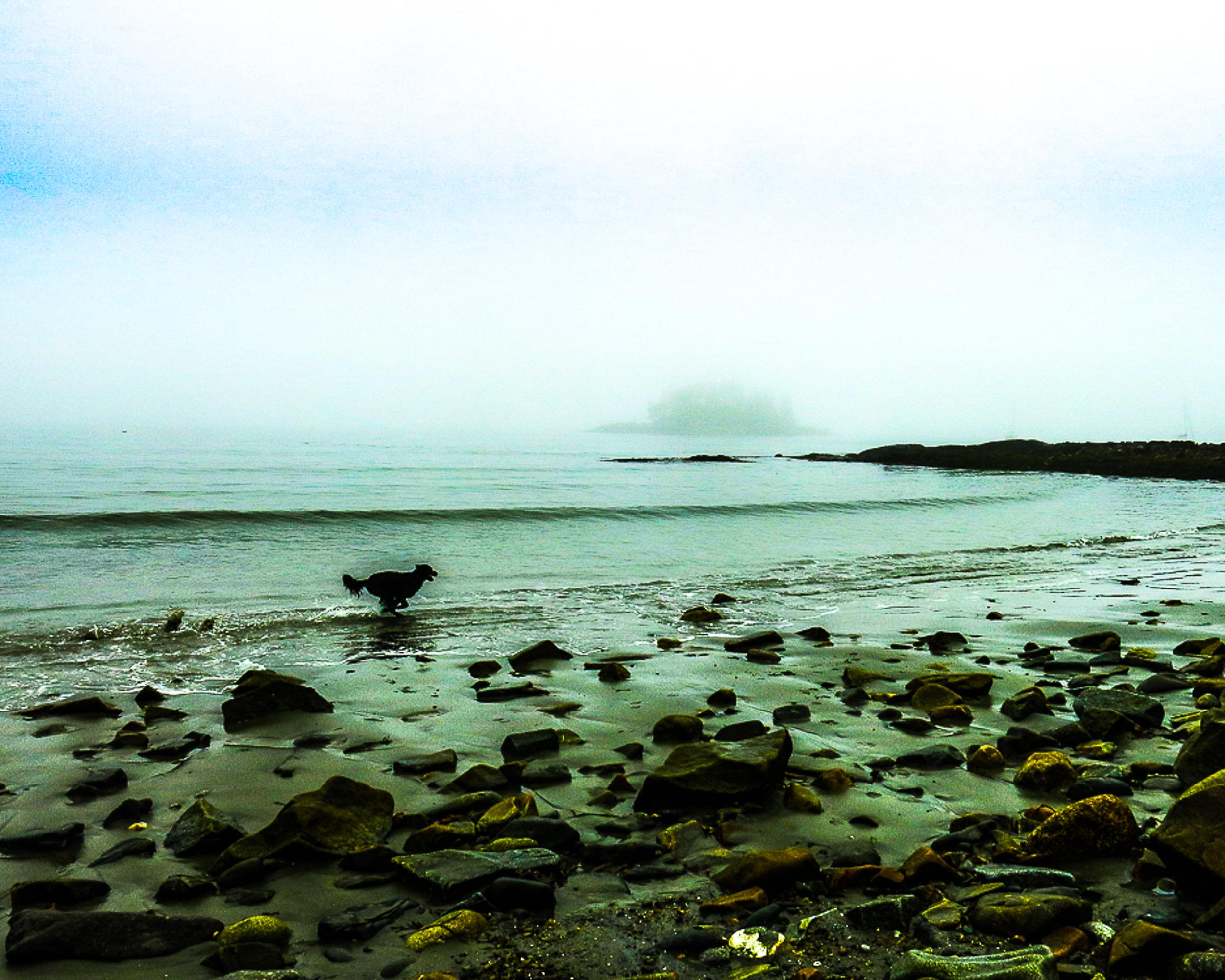 Joy Crescent Beach.jpg