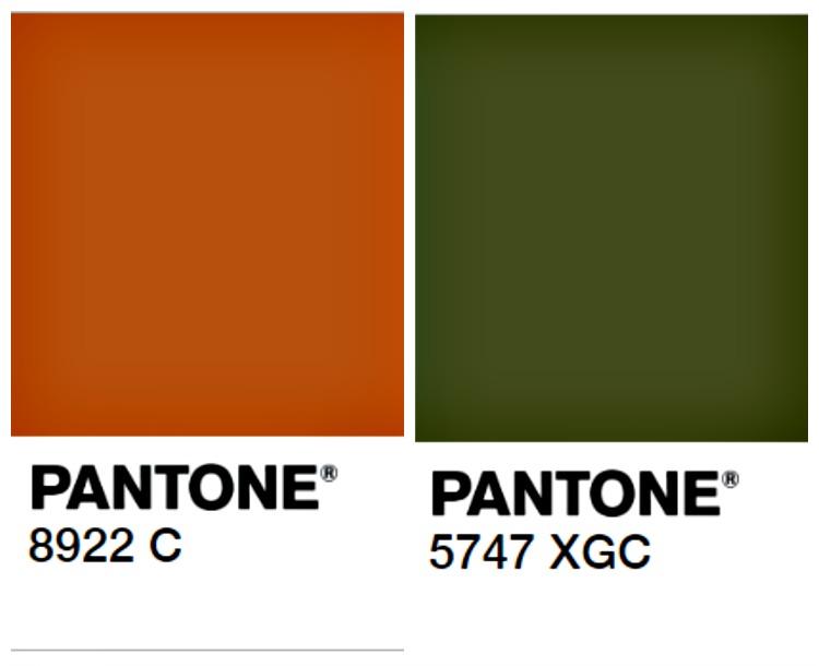 Fall-Color-Combo-Burnt-Orange-Olive-Green.jpg