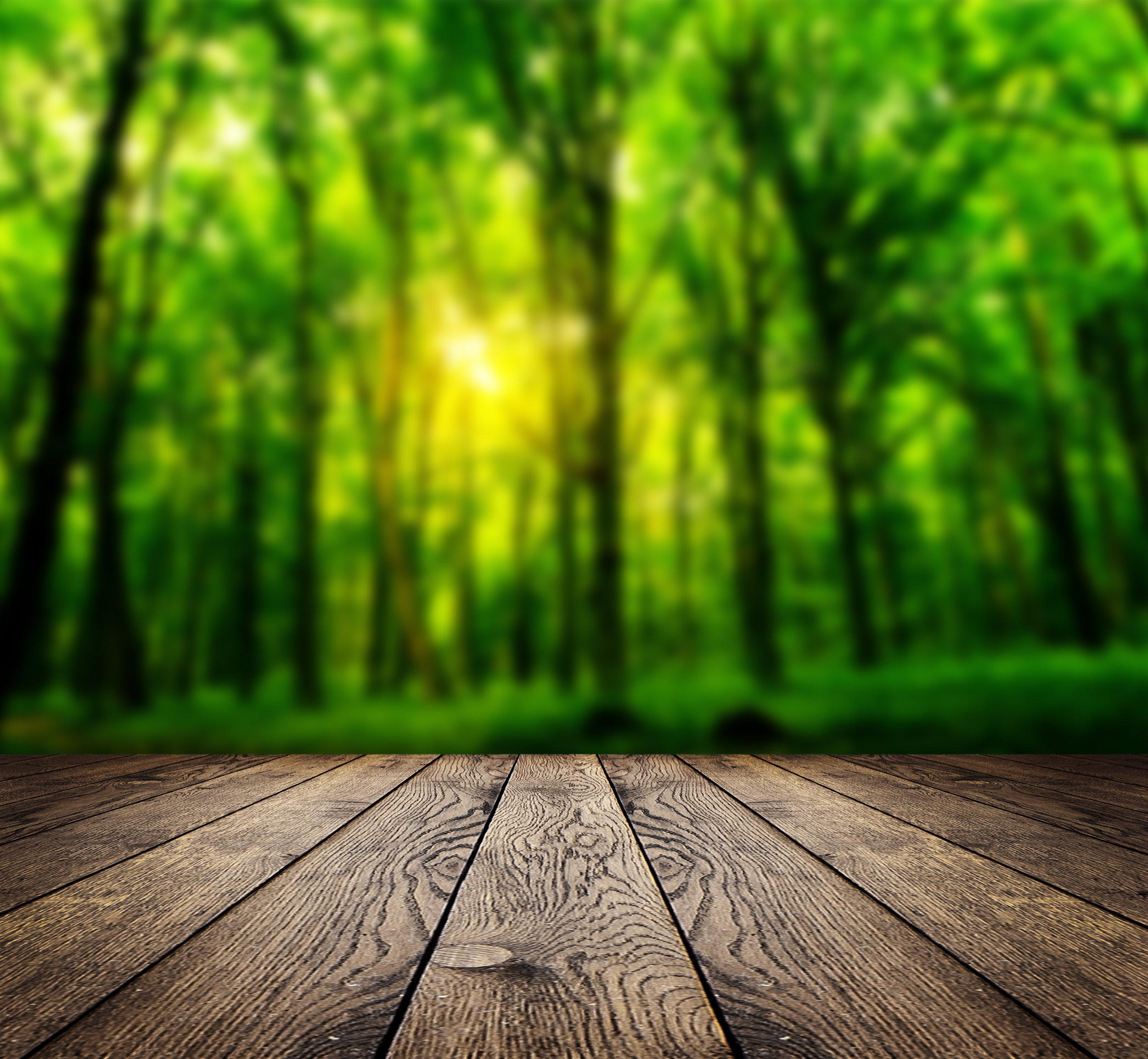 AdobeStock_49517548 tree porch.jpeg