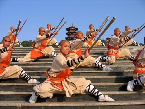 20e624e0fb785a60196abbd2bc77bd19--shaolin-kung-fu-kungfu.jpg