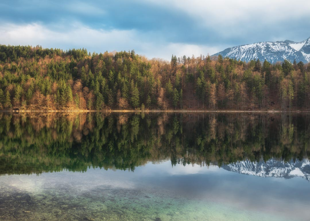 Alatsee Forest Reflection