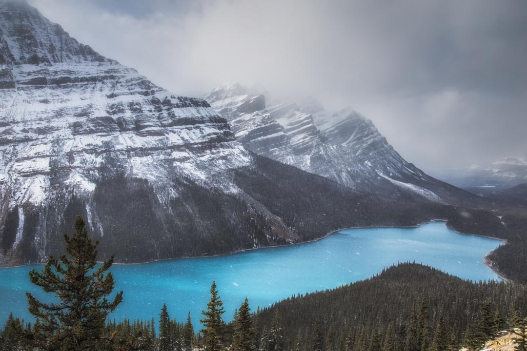 Snowfall at Peyto Lake No 2
