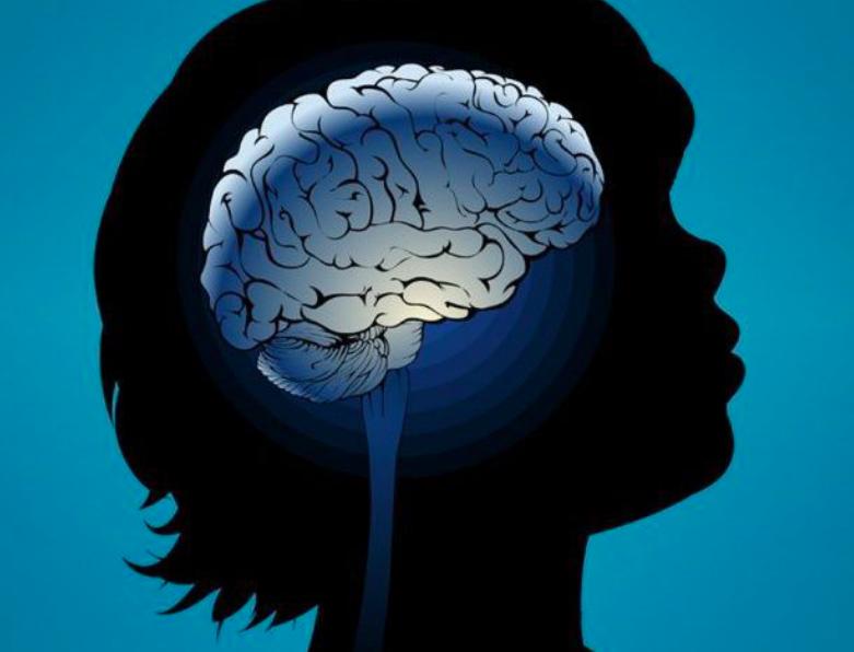 All Things Brain