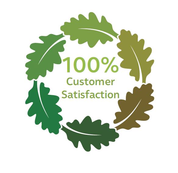 customer satisfaction.png