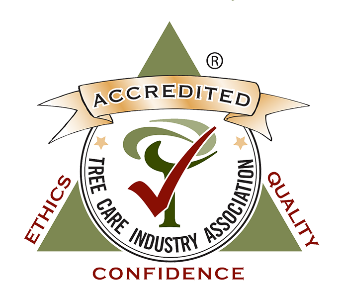 TCIA accredited small.png