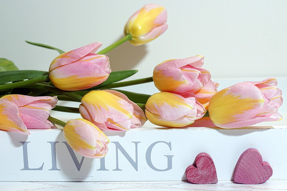 tulips-3142622_960_720.jpg