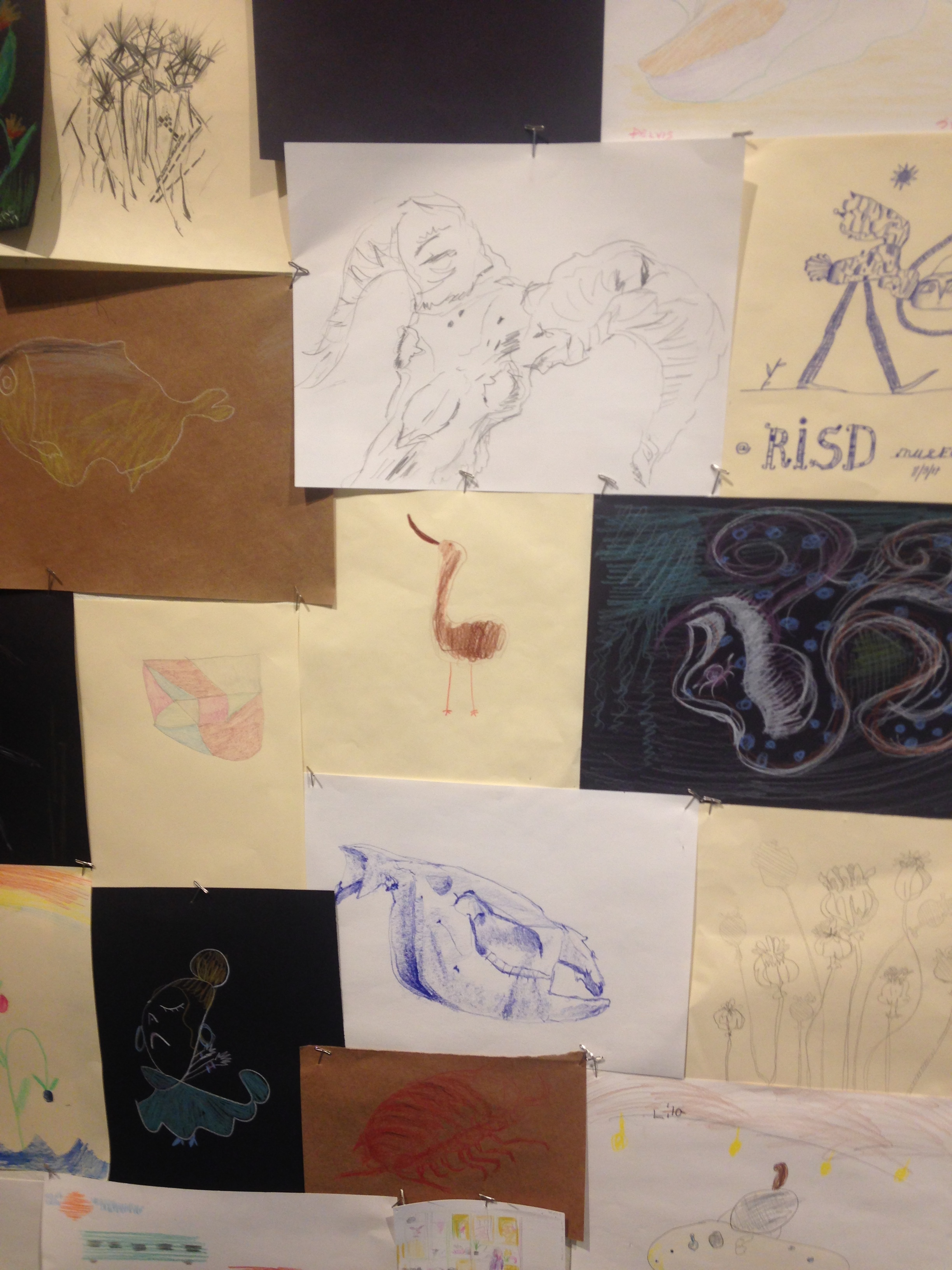 drawings by visitors hung on the gallery walls