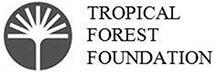 tropical-forest-foundation-85195392 copy.jpg