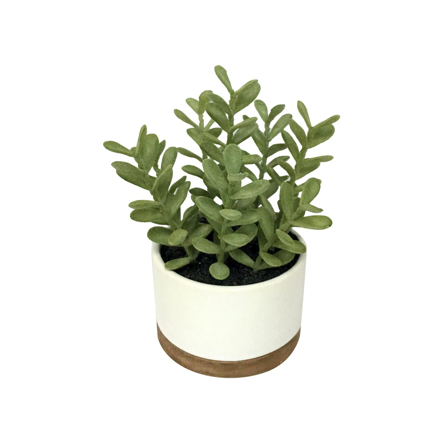 Threshold Artificial Plant