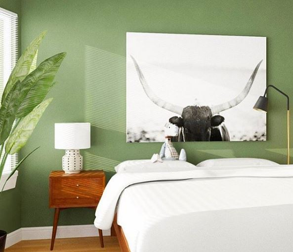 bedroom - green wall.JPG