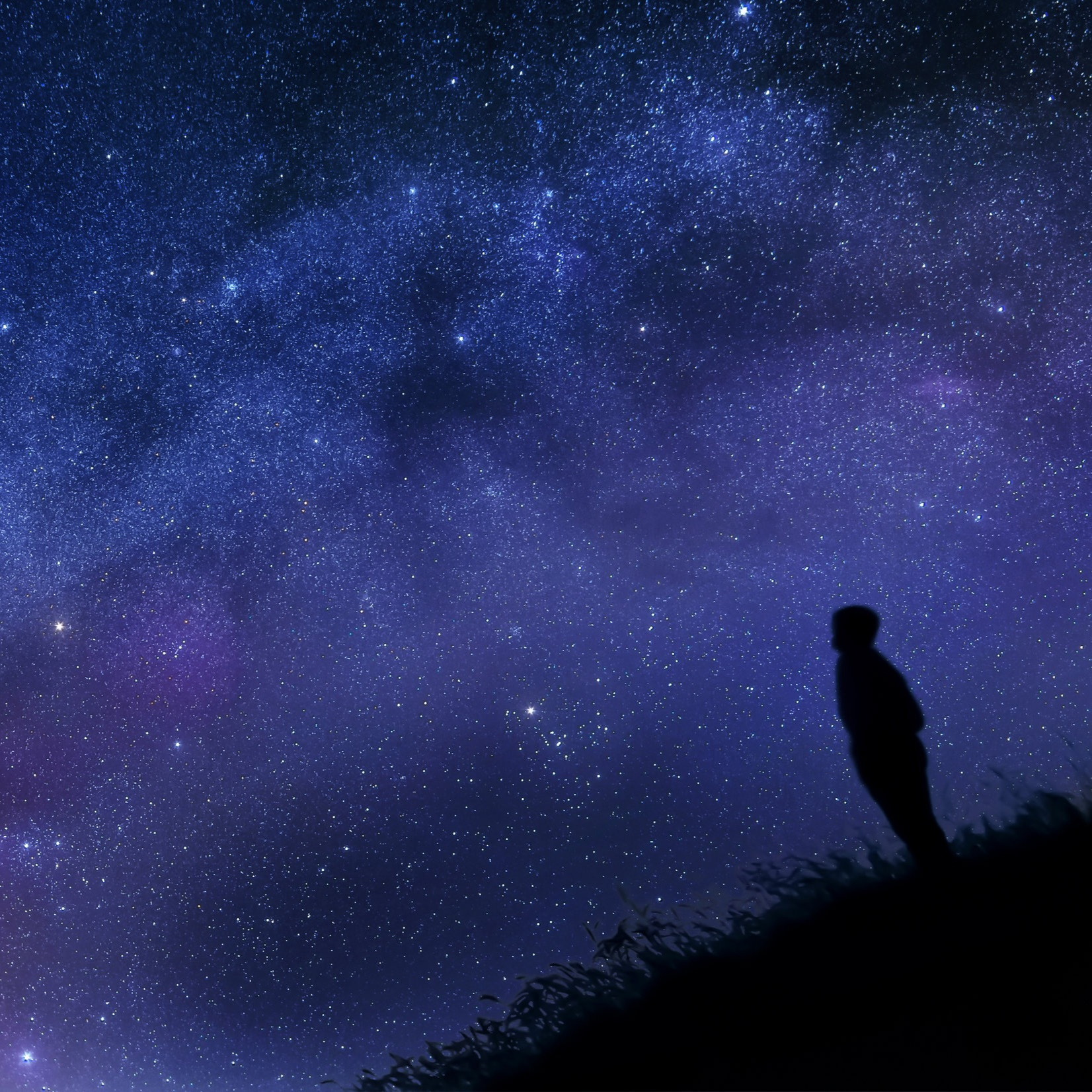 STORIES IN THE STARS -